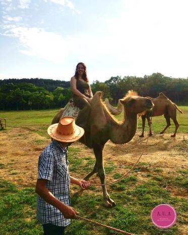 balade a dos de chameau en chine