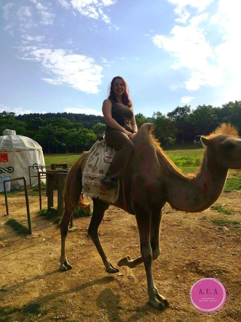 balade à dos de chameau en Chine