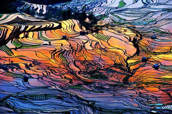 yunnan-yuanyang-terraced-rice-fields-600x396