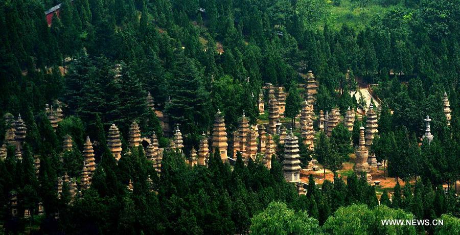 Pagoda-Forest-at-Shaolin-Temple-o81