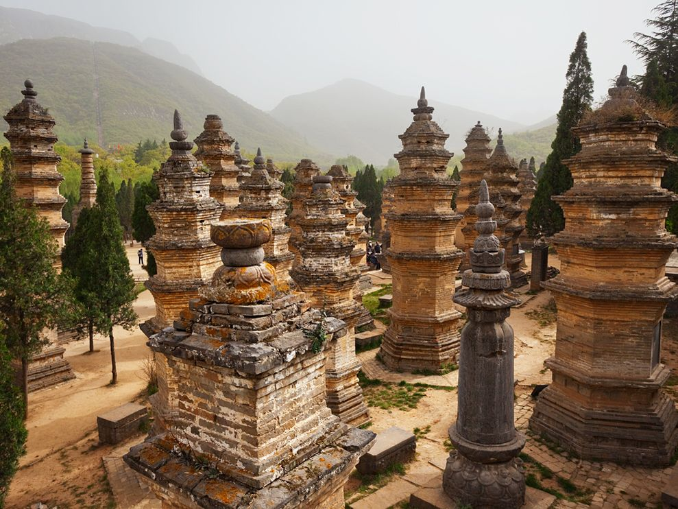 pagoda-forest-china